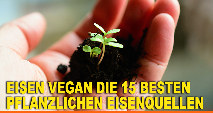 Eisen-vegan-Die-15-besten
