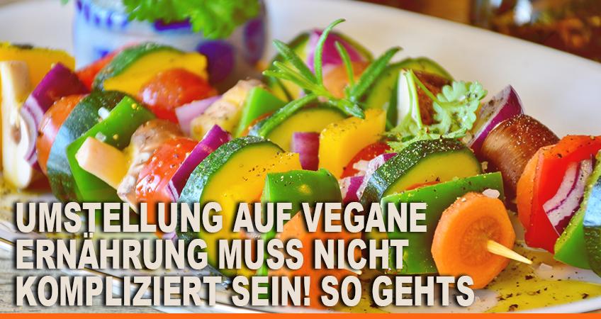 Umstellung-auf-vegane-Ernahrung-muss-nicht-kompliziert-sein-So-gehts