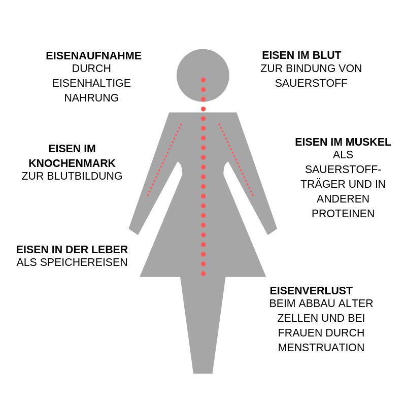 eisen-vegan-eigenschaften-infografik
