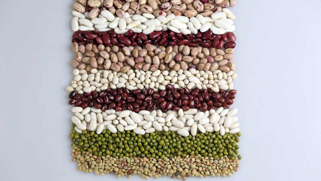 eiweiß-fuer-veganer-bohnen-1024x576