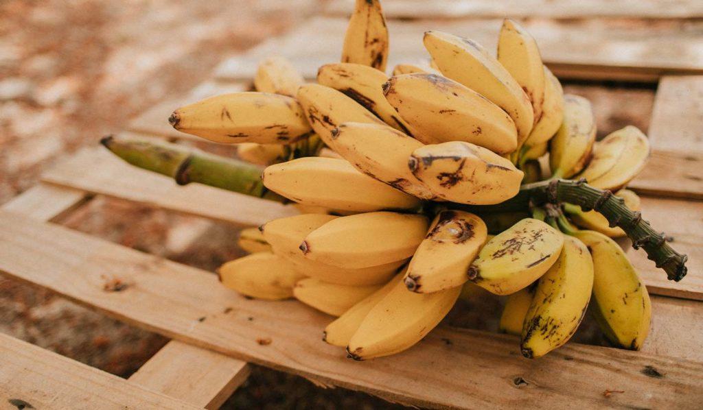vegan-werden-banane-1024x598