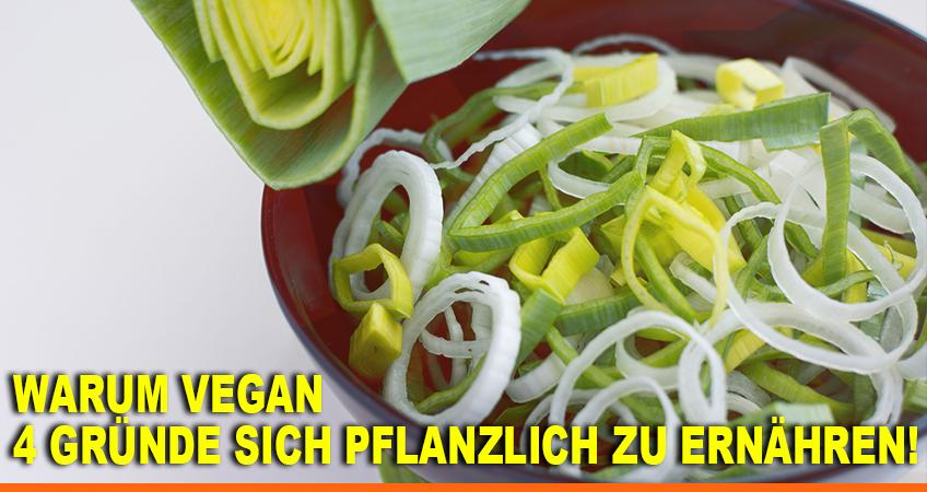 Warum-vegan-–-4-Gründe-sich-pflanzlich-zu-ernähren
