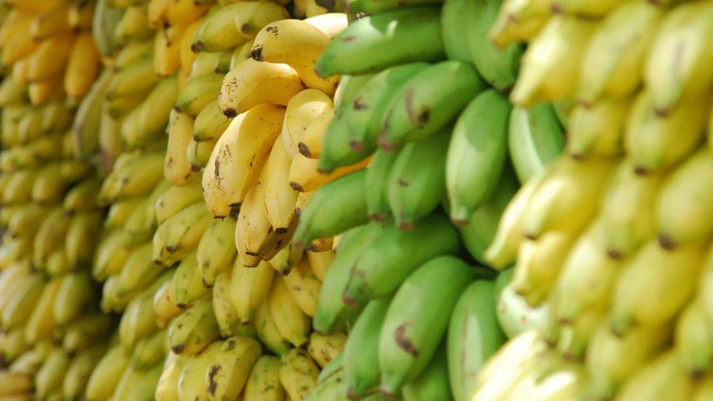 vegan-einkaufen-bananen-1024x576