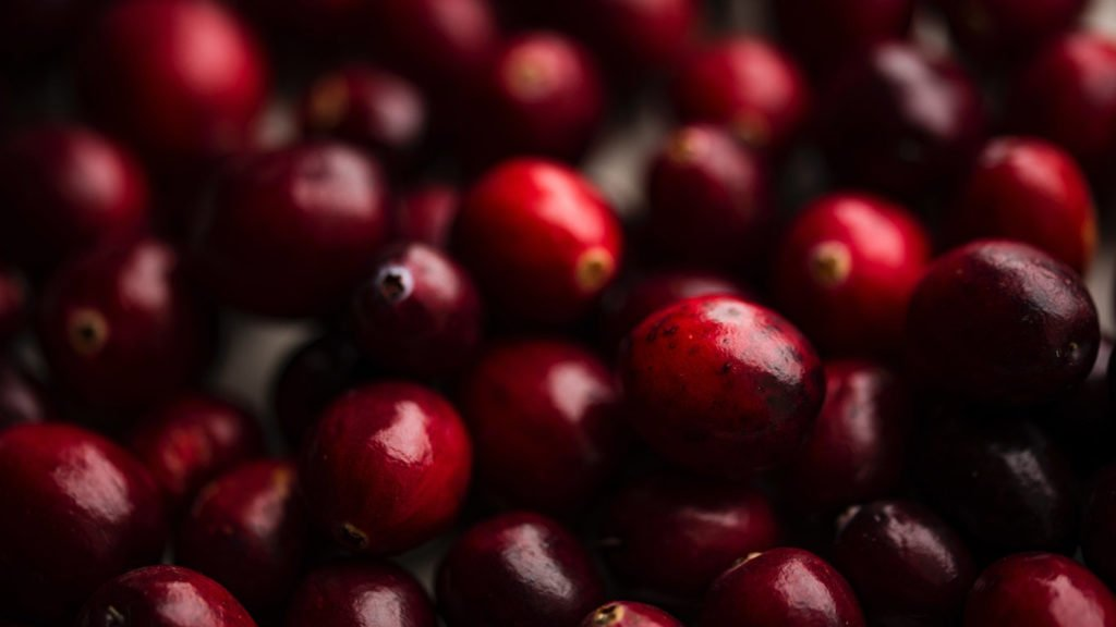 vegan-einkaufen-cranberries-1024x576