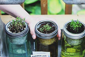 vegane-fitness-ernährung-selbst-anbauen