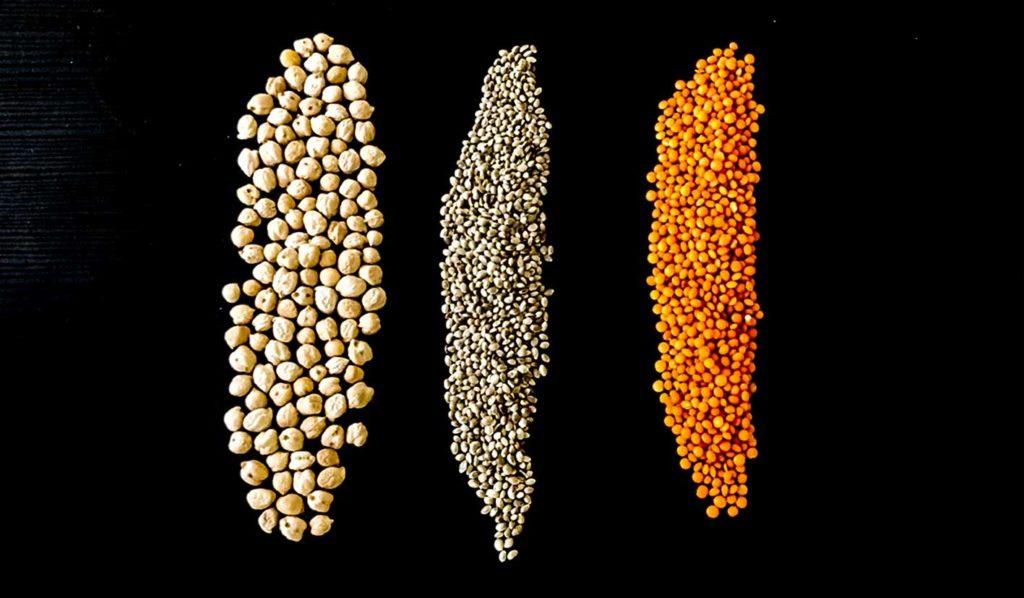 vegan-abnehmen-worauf-achten-proteine-1024x598