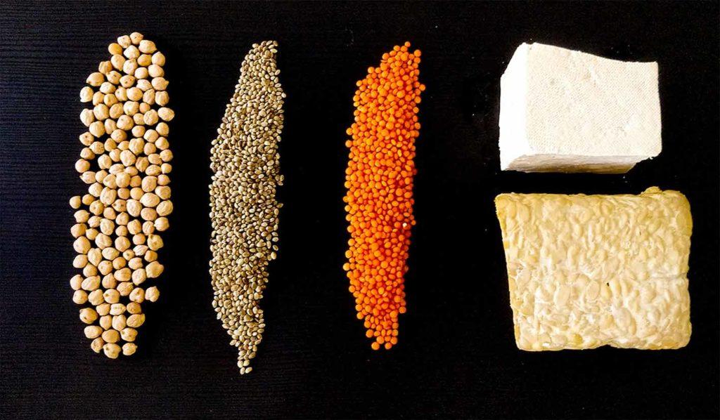 vegan-für-einsteiger-pflanzliche-proteinmischungen-1024x598