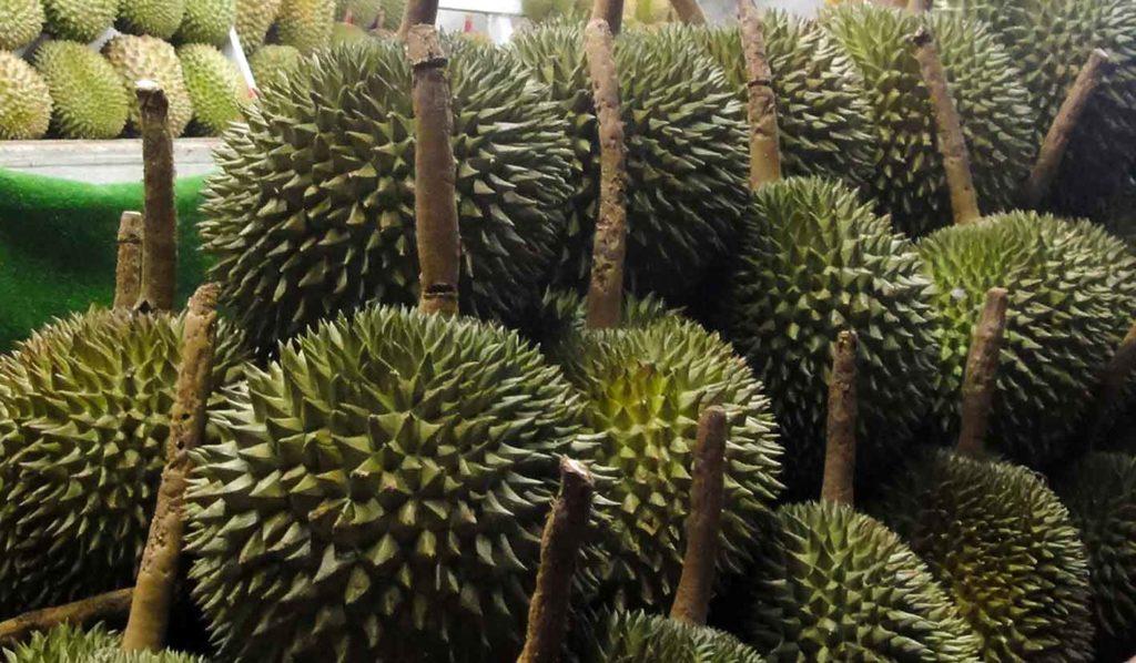 vegan-und-glutenfrei-durian-1024x598