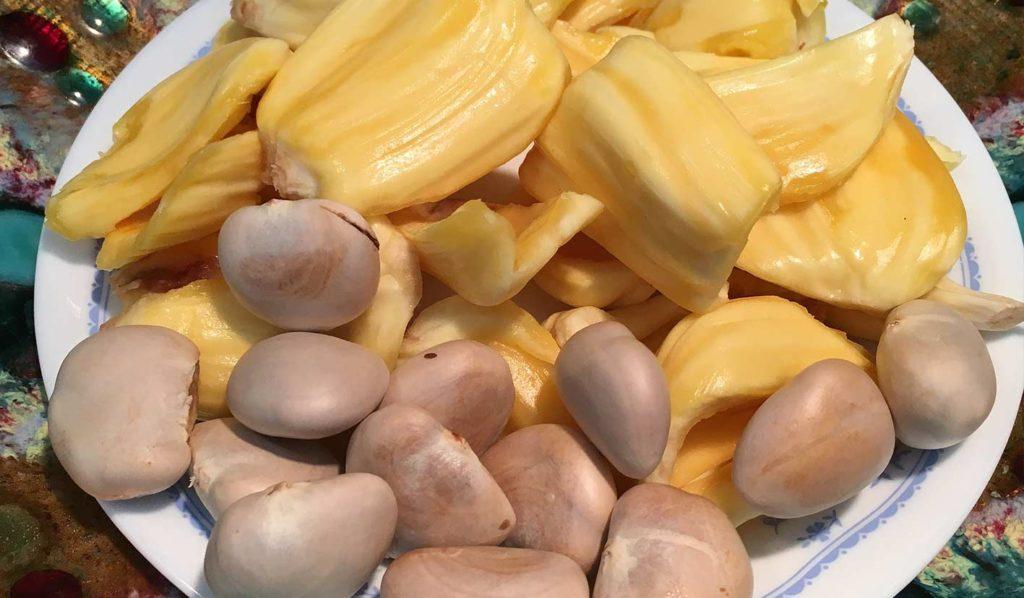 vegan-und-glutenfrei-jackfrucht-zubereiten-1024x598