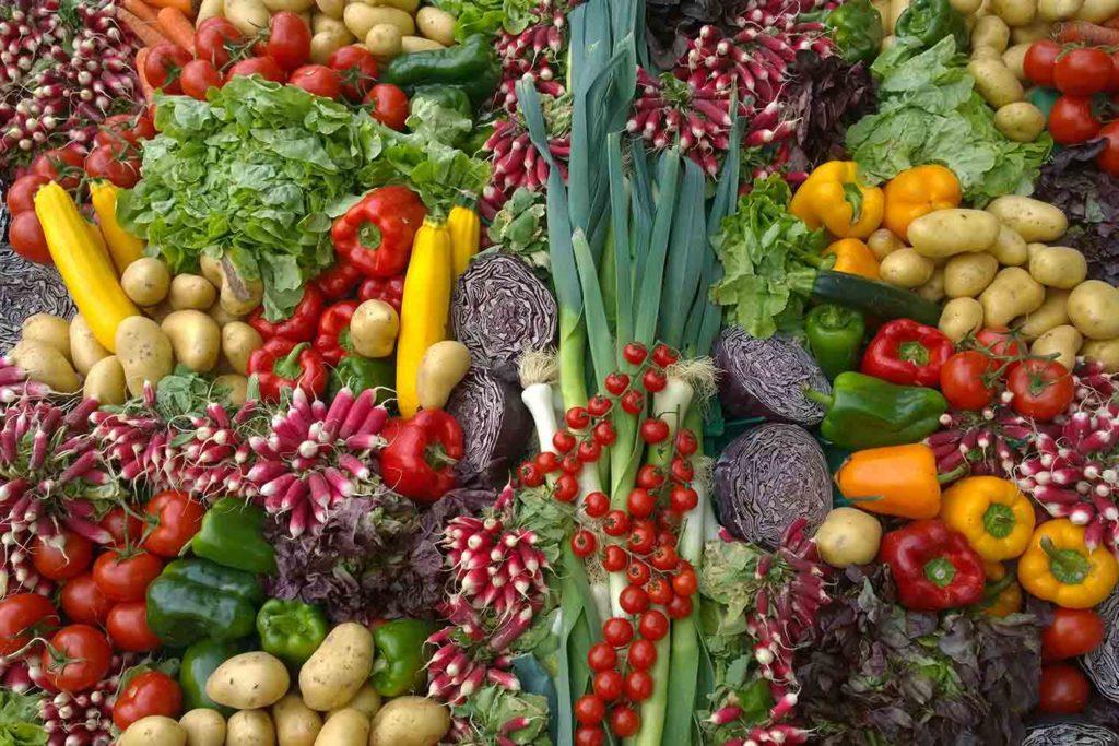 vegane-ernährung-abnehmen-was-ist-das-1024x683