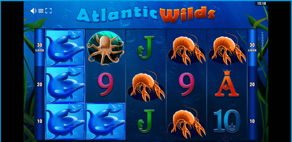 erfahrung_veraundjohn_atlantic_wilds