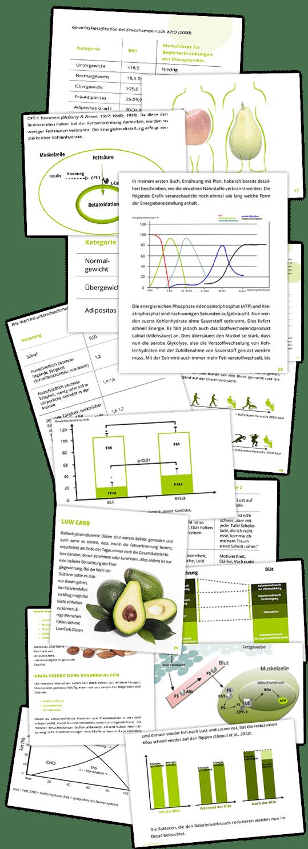 erfahrungen_hungerstoffwechsel_grafiken