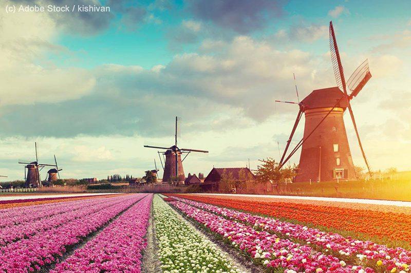 Bild: Windräder in Holland